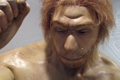 Harvard Professor Looking for Volunteer to have Neanderthal Baby